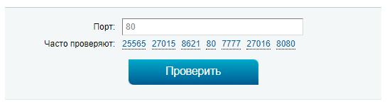 типичная форма онлайн сервиса для проверки порта на открытость
